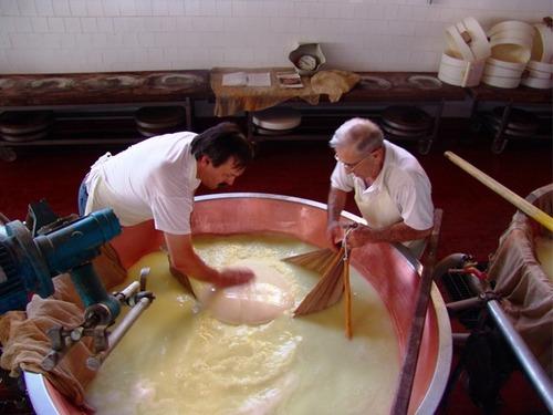イタリア パルミジャーノチーズ工場見学