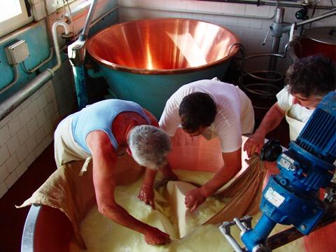 イタリア レッジャーノチーズ工場見学