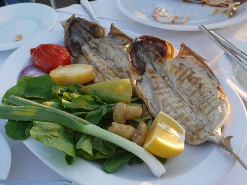 トルコ旅行 おすすめディナー