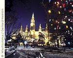 ウィーンの「クリスマスマーケット」