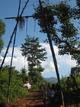 竹でこしらえたブランコ 青空に高く飛びま