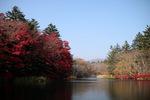軽井沢 雲場池1