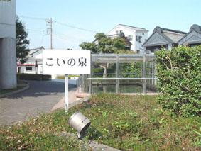 のらっせ号17
