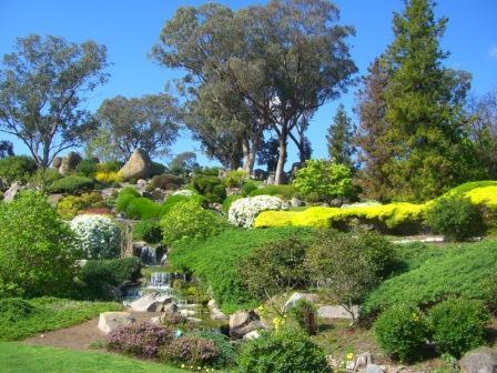 カウラ日本庭園3