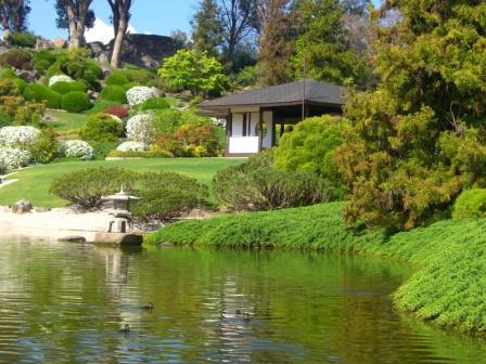 カウラ日本庭園5