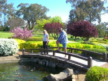 カウラ日本庭園6