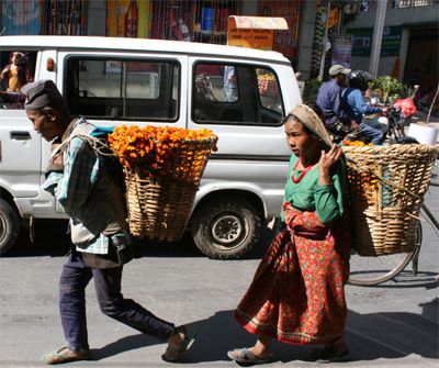背負子でマラを運ぶ老夫婦