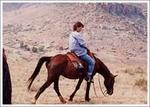 馬に乗って峠越え1
