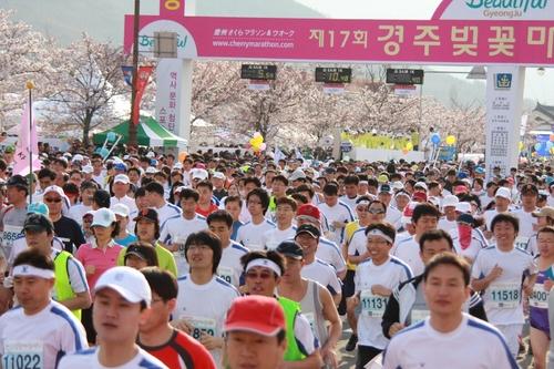 慶州さくらマラソン&ウォーク大会