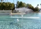 アリゾナ噴水