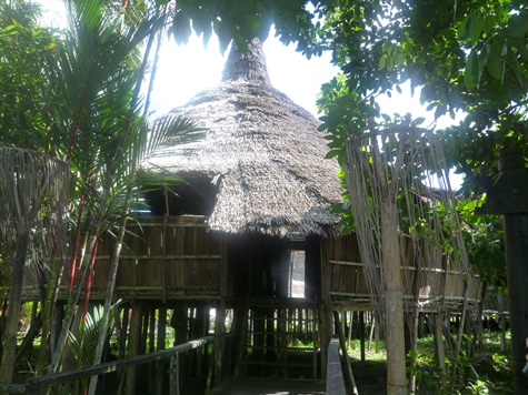 ビダユ族のロングハウス