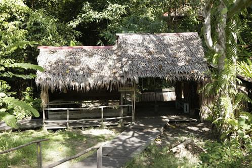 プナン族の小屋