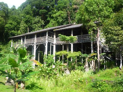 オランウル族ロングハウス
