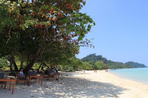 昼はビーチ横にでてきます