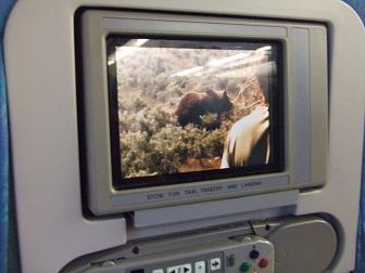 スリランカ航空エコノミークラス機内
