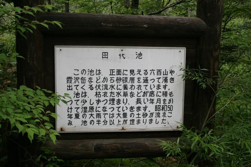 大正池〜河童橋〜明神池009