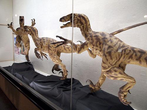 恐竜展06ディノニクス1