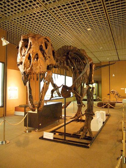 恐竜展07ティラノ1