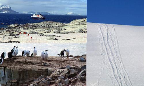 南極ピーターマン島