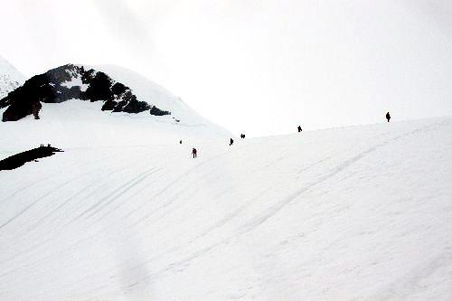 南極半島ネコハーバー