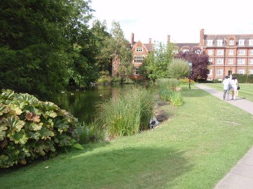 ケンブリッジの庭