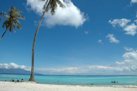 モーレア島テマエビーチ