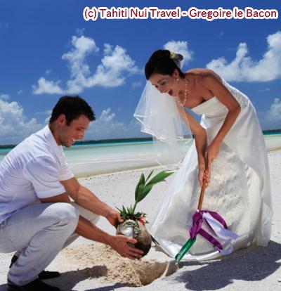 ツパイ島植樹(タヒチ)
