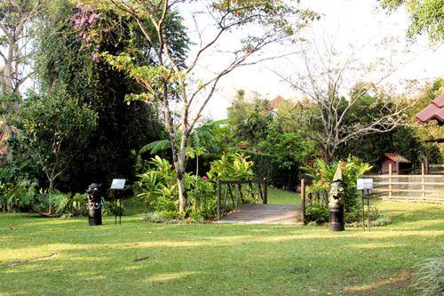 モンテベルデ自然保護区07