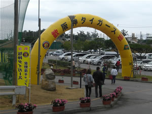 阪神タイガース2012キャンプ2