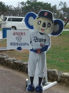 2013プロ野球キャンプバス7