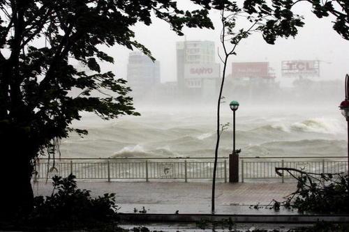 台風ビクトリア