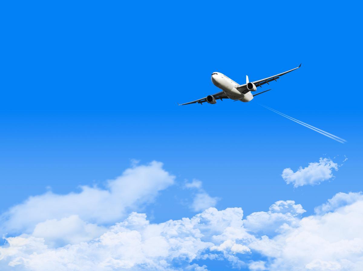 コロナ ウイルス 飛行機 キャンセル