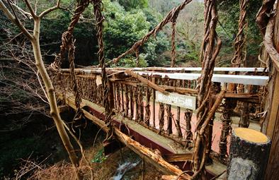 日本の秘境へ行きたい!徳島には秘密がいっぱい♪