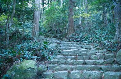 世界遺産熊野古道と、神域・那智勝浦へ。
