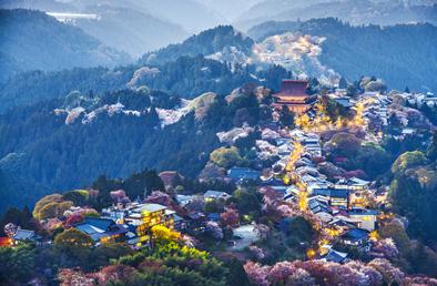 悠久の時を越えて、現代もなお美しい吉野山へ。