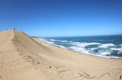 海と砂漠のコントラストが美しい鳥取砂丘と、因幡の白うさぎの舞台へ。